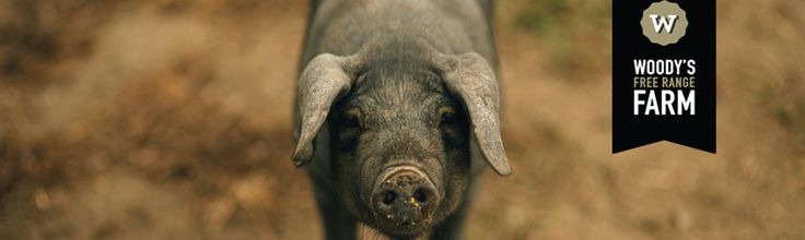 Woody's Free Range Farm, selling the freshest free range pork products which can be delivered straight to your door.