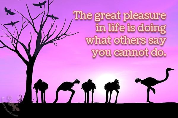 The great pleasure in life is doing what others say you cannot do.  #great #pleasure #live #others #cannot #quotes  ©The Gecko Said - Beautiful Quotes - www.thegeckosaid.com