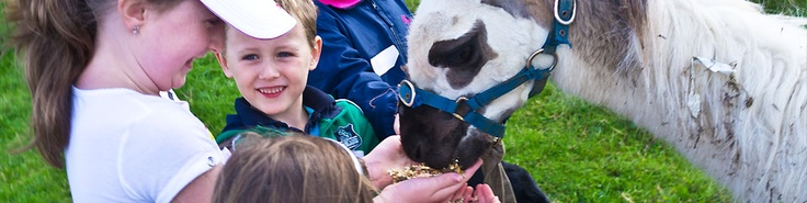 Pet Farming for Kids, this Lama is so friendly!  http://www.mycarrick.ie/to-do/nature-and-countryside/105/Tullyboy-Farm