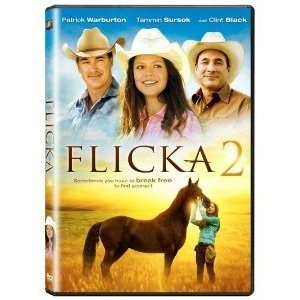 Flicka 2 Horse Movies Family Movies Tammin Sursok