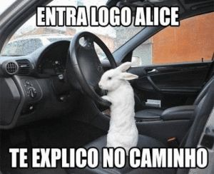 Vai ALICE TO ATRASADO!