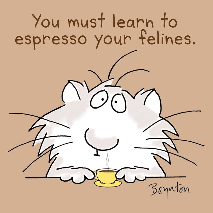 November 23 is ESPRESSO DAY. Get over-involved.