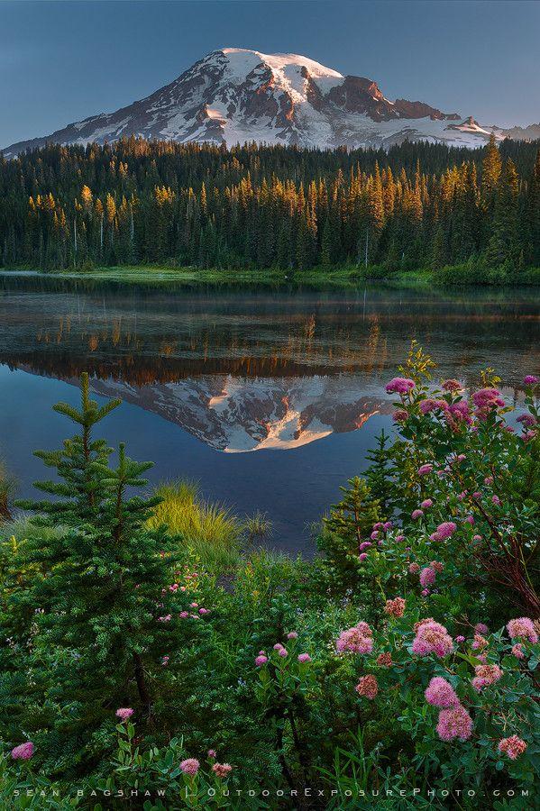 ~~Reflection Lake, Mt. Rainier ~ peaceful sunrise, Washington by Sean Bagshaw~~
