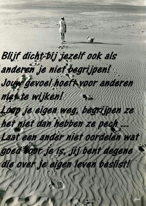 Dutch quote, oh so true