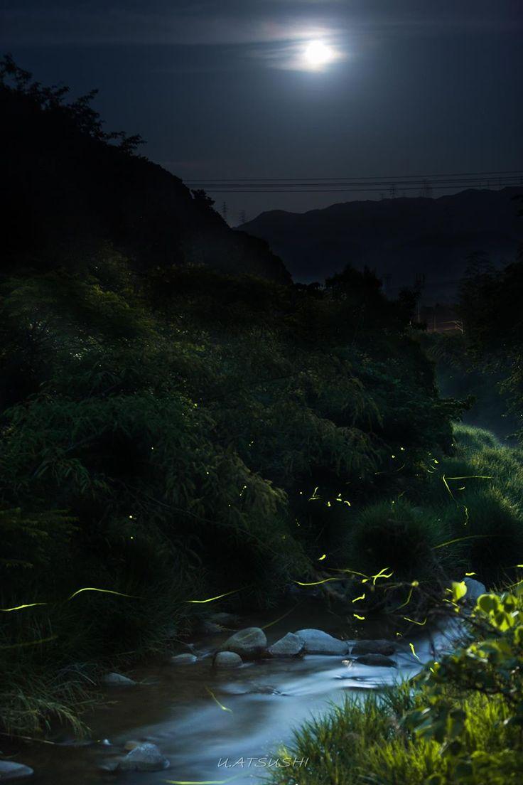 東京カメラ部 New:Atsushi Umezaki