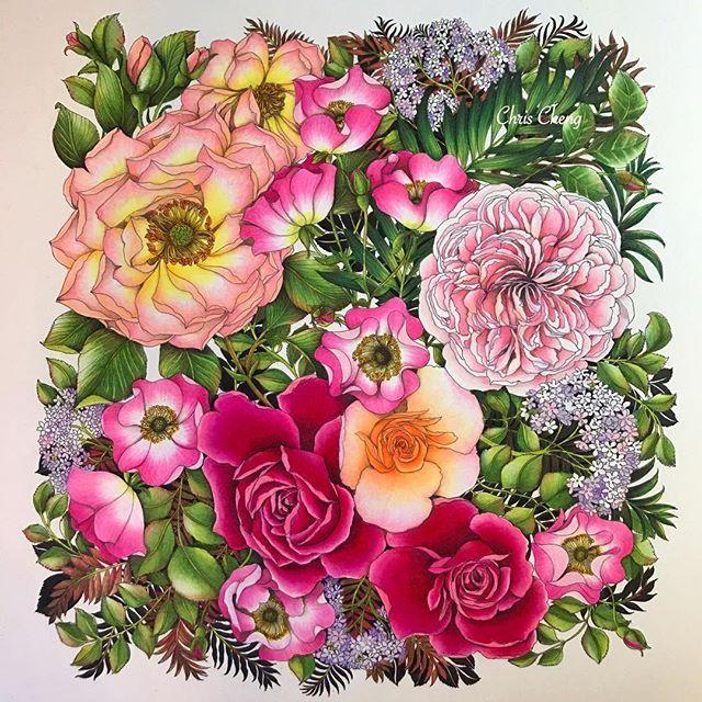 264 Best Floribunda And The Flower Year Leila Duly Images On