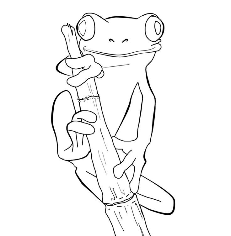 Pin By Redbanger Velazquez On Myboard Frog Coloring Pages