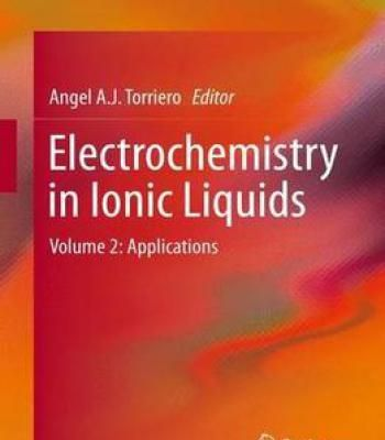 Electrochemistry In Ionic Liquids: Volume 2: Applications PDF