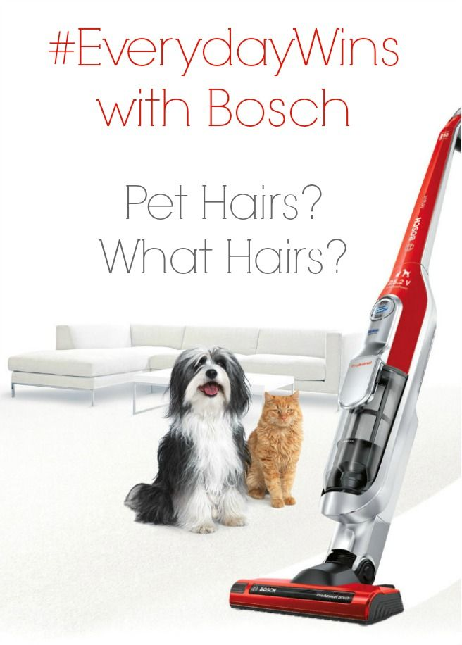 #EverydayWins with Bosch – Pet Hairs? What Hairs?