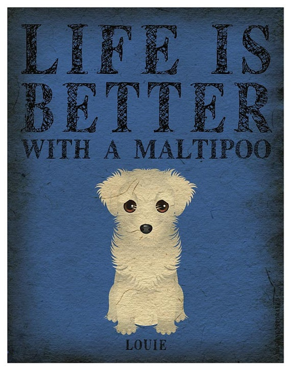 Life is Better with a Maltipoo Art Print- SOLD