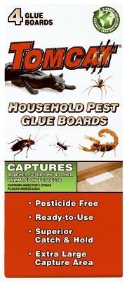 Household Pest Glue Boards >>> To view further for this item, visit the image link.