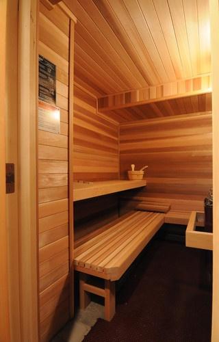 Home Sauna - contemporary - patio - minneapolis - Castle Building & Remodeling