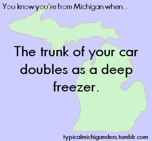 You Know You're From Michigan When... LOL, i've done this!