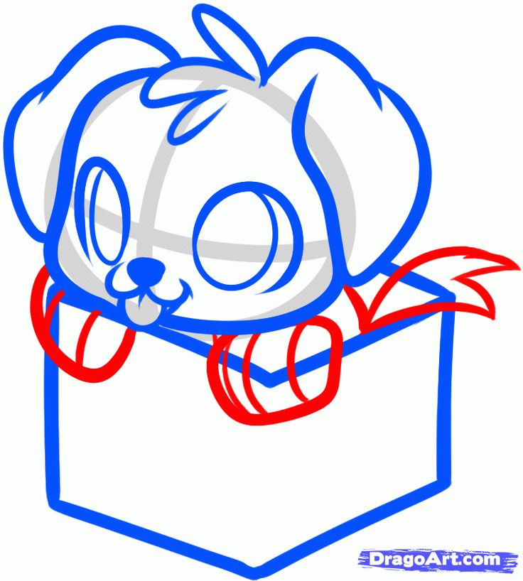how to draw a christmas puppy christmas present step 6