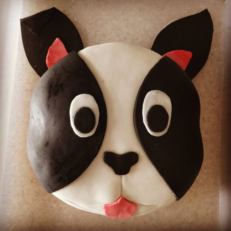 Boston Terrier cake for dads birthday double chocolate and delicious… #chocolatecake #birthday