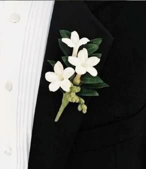 Stephanotis Boutonniere in Pembroke, MA - CANDY JAR AND DESIGNS IN BLOOM