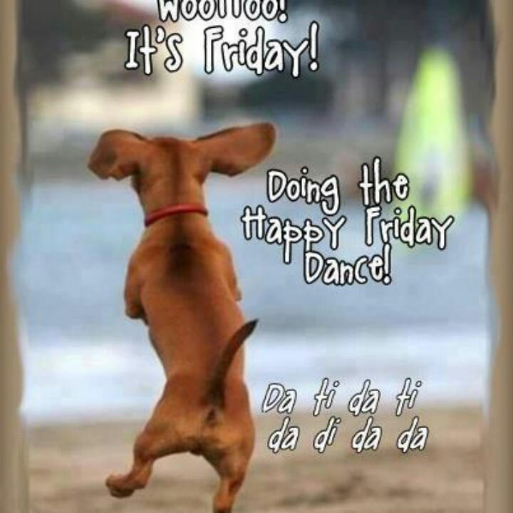 Funny Happy Dance Meme : Happy friday dance tgif pinterest