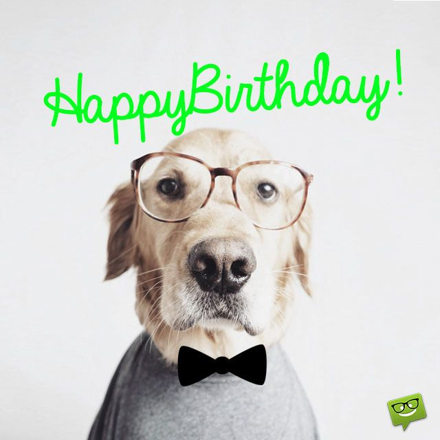 Happy Birthday (from an intellectual dog).