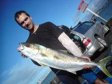 Kingfish caught in Mission Bay, Auckland, New Zealand