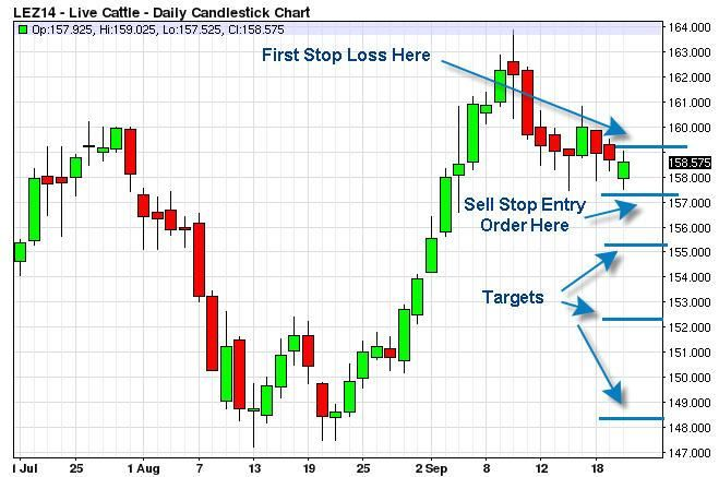 Live Cattle Futures