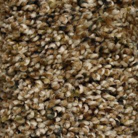 Stainmaster Valmeyer Essentials Chipstead Plush Carpet Sample S437605chipstea-Tead