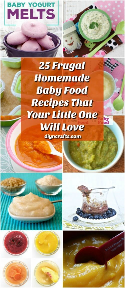 25 Frugal Homemade Baby Food Recipes That Your Little One Will Love - DIY & Crafts