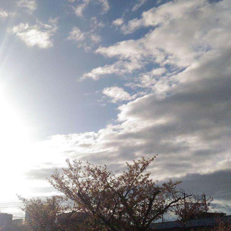 おはようございます雨上がりの朝いい天気になるのかな #sky #cloud #空 #雲 #イマソラ #goodmorning #おはよう
