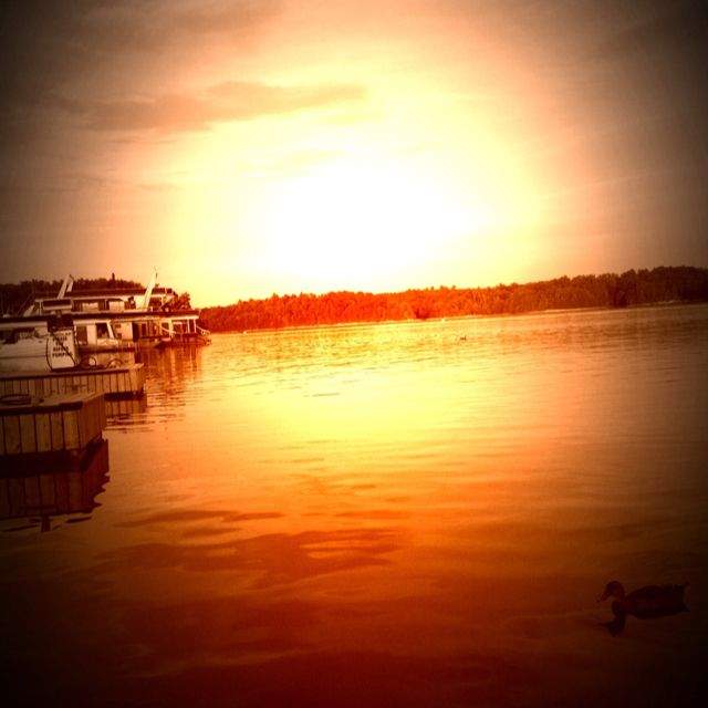 Laurel Lake ~ Holly Bay