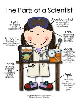 """NEW... """"The Parts of a Scientist""""  (A boy version is available, too.)  $1.00"""