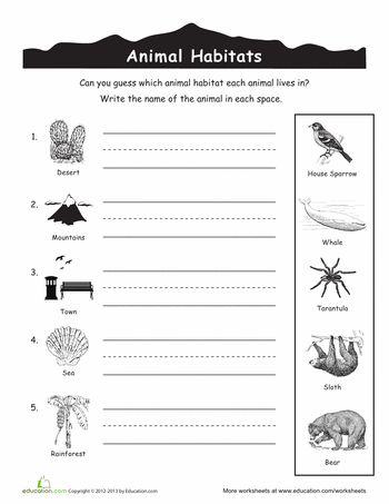 67 best preschool animal habitats images on pinterest animal habitats biomes and life science. Black Bedroom Furniture Sets. Home Design Ideas