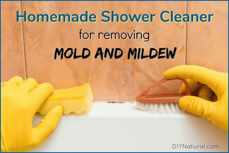 Homemade Shower Cleaner And Mold Remover Recipe