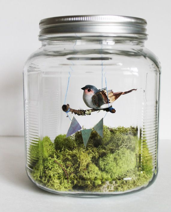 bird in a jar diorama spring home decor von ReverseChronology