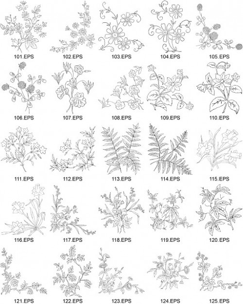 Flower Plant Line Drawing : Best plant figure drawing images on pinterest plants
