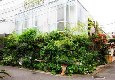 Kaza Hana Green Wall, Japan
