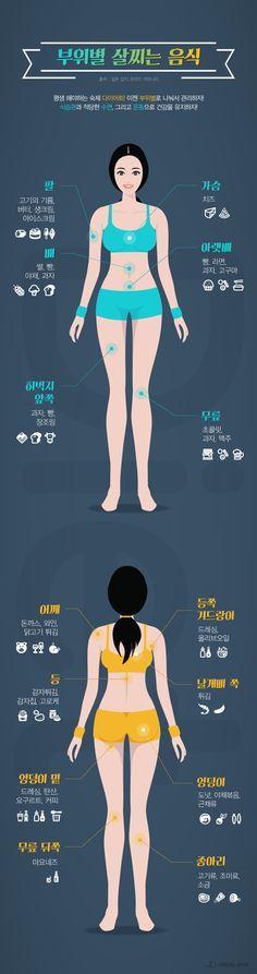 '부위별 살찌는 음식' 알고 다이어트 돌입하자 [인포그래픽] #Health / #Infographic ⓒ 비주얼다이브 무단 복사·전재·재배포 금지