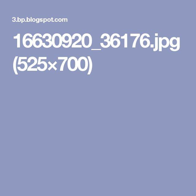 16630920_36176.jpg (525×700)