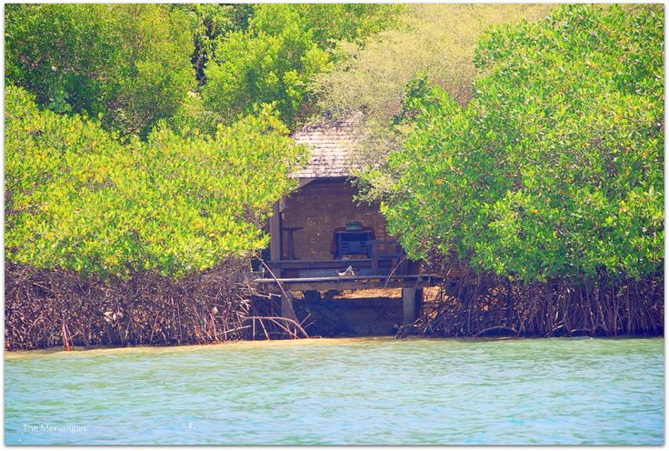 The Mangrove Spa is simple and peaceful