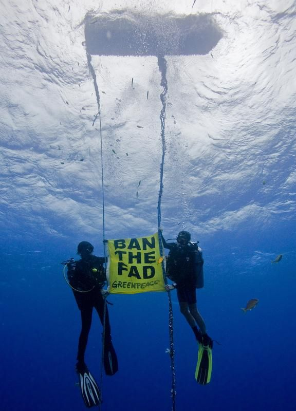 Greenpeace activists hold a banner under an illegally deployed fish aggregating device (FAD) in the exclusive economic zone of the Republic of Palau.   Photographer: Alex Hofford / Greenpeace