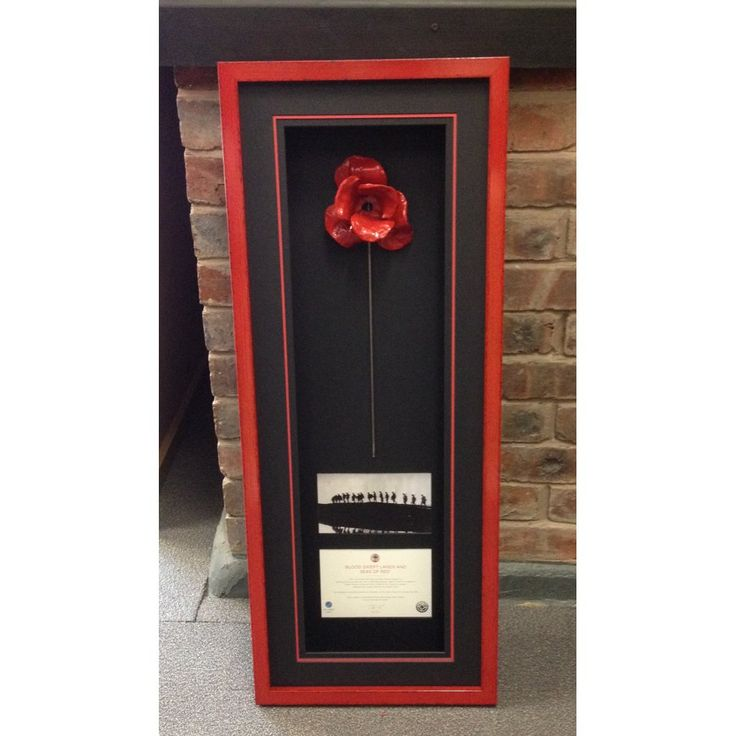 Paul Cummins Ceramic Poppy Framing from the Blood Swept Lands and Seas of Red Installation main image