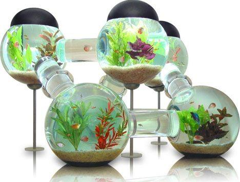 i love aquariums.