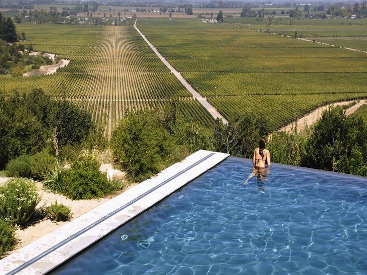 Lapostolle Vineyards Chile