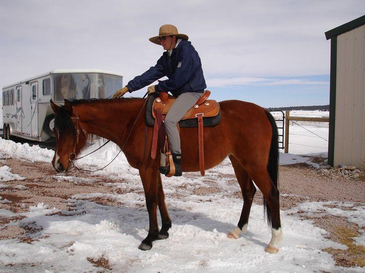 Create a De-Stress Button for your Horse
