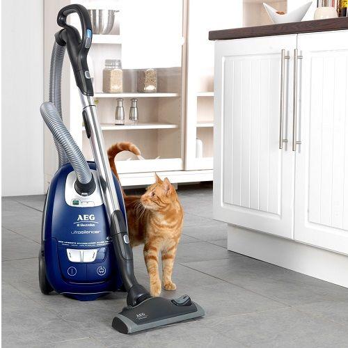 canister vacuum at best buy vacuum