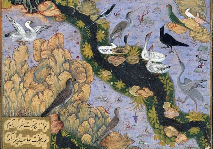 The Conference of the Birds: from a manuscript of the Mantiq al-Tayr (The Language of the Birds) of Farid al-Din Attar, ca. 1600; Safavid period, Isfahan Opaque watercolor, ink, silver, gold on paper