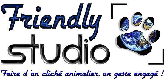 Friendly Studio - Le photographe de votre animal de compagnie