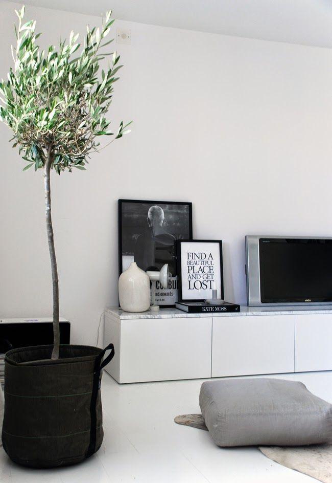 olijvenboompje in huis / olivo en salón decorado blanco y negro minimalista