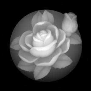 Flower20021