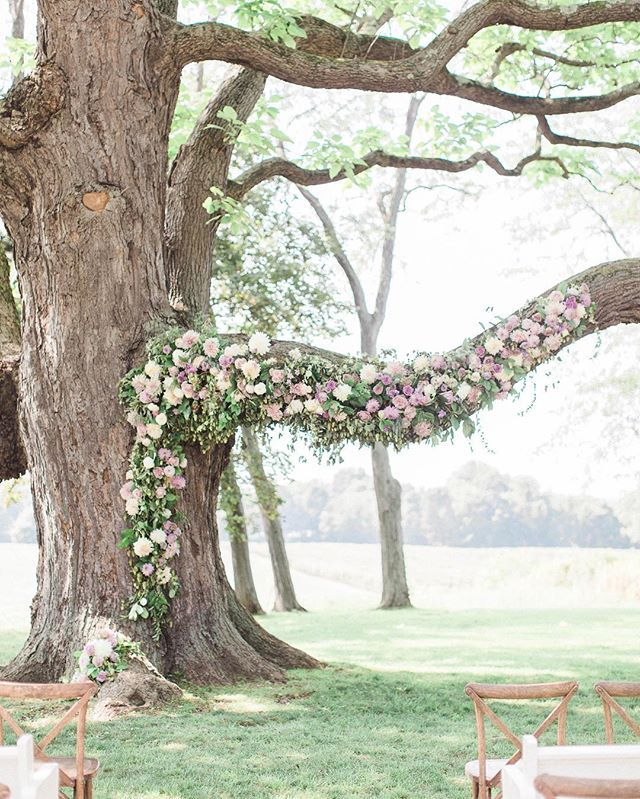25 Chic And Easy Rustic Wedding Arch Ideas For Diy Brides: 25+ Best Ideas About Ceremony Arch On Pinterest