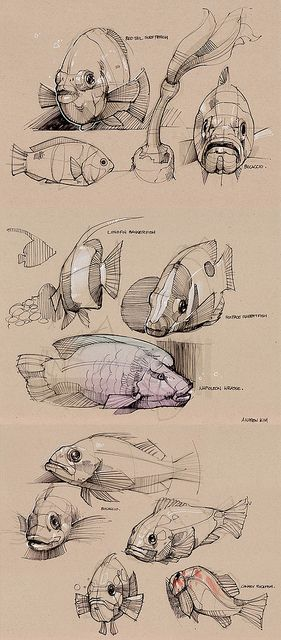 Drawing Fish: multiple angle, line/contour studies