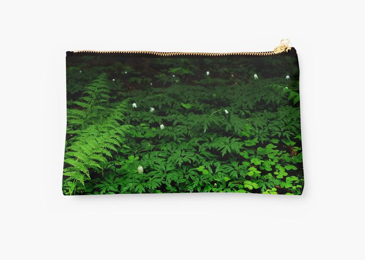 In The Forest Studio Pouch by Anastasia Shemetova #wood #forest #heart #landscape #green #soil #deep #photo #photography #faerieshop #mystic #mystical #beautiful #plants #clover #fern #bell #white #night #dark #mysterious #jungle #tropical #redbubble #accessories #bag #back to school #women